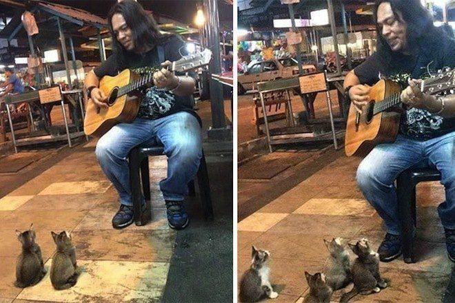 Artista De Rua Na Malásia Conquista Grupo Inusitado De Fãs